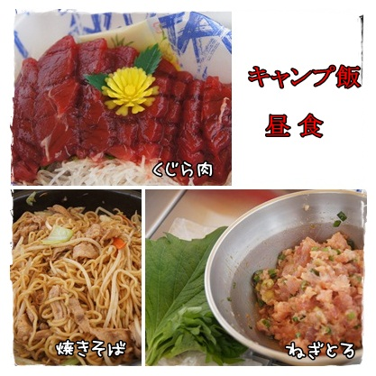 page_20120708225054.jpg