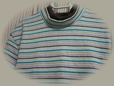 半袖セーターのようなもの