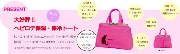 gift_cat.jpg