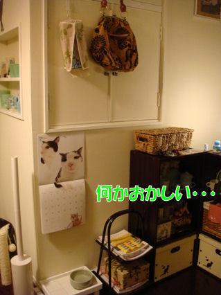 0_20120825211234.jpg