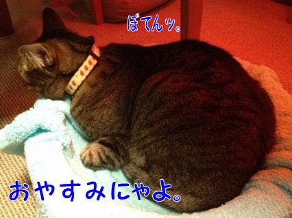 11_20121217201332.jpg