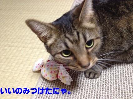 1_20120803165010.jpg