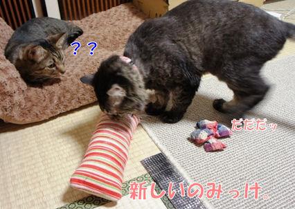 1_20121013000139.jpg