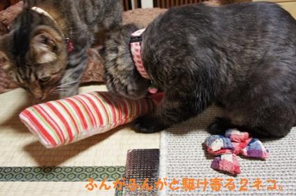 1_20121024171807.jpg