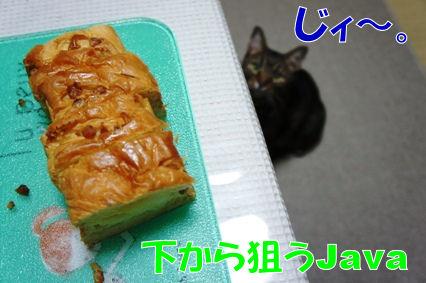 2_20120823181822.jpg