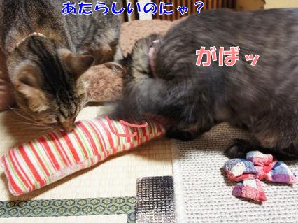 2_20121013000138.jpg