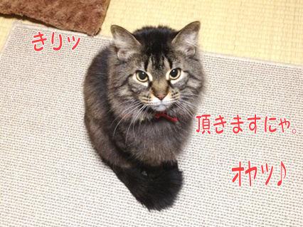 2_20121222235915.jpg