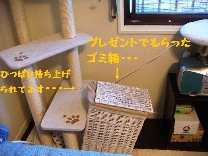 3_20120809191056.jpg