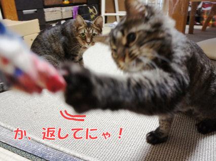 3_20121005223230.jpg