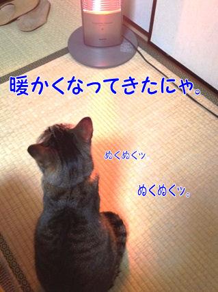 3_20130117000958.jpg