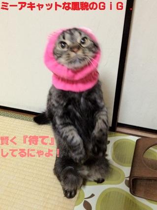 4_20120801182320.jpg