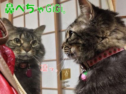 4_20121119223532.jpg