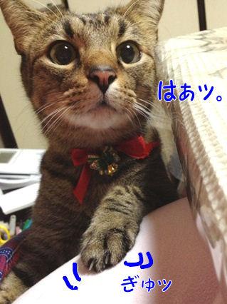 4_20121226232832.jpg