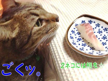 4_20130114230256.jpg