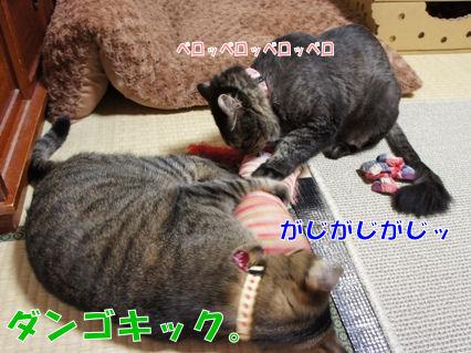 5_20121013000138.jpg