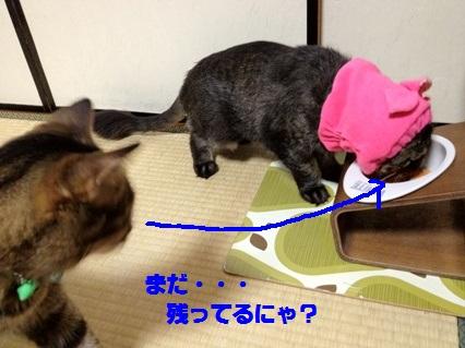 6_20120801182320.jpg
