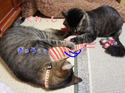 6_20121013000137.jpg