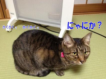 6_20121119223532.jpg