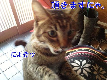 6_20121220220844.jpg