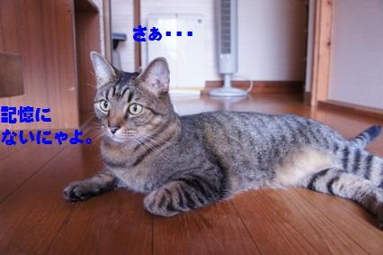 7_20120813173647.jpg