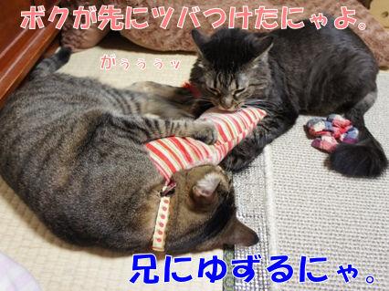 7_20121013000203.jpg