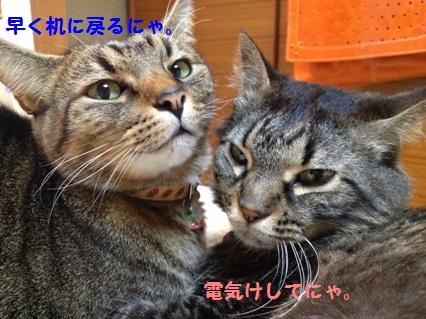 7_20121025171622.jpg