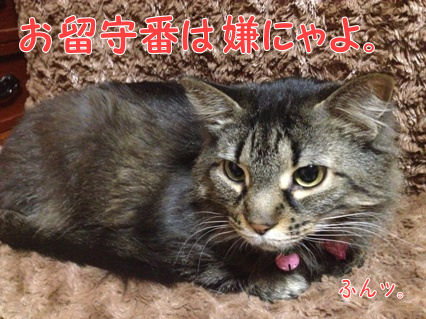 7_20121218233125.jpg