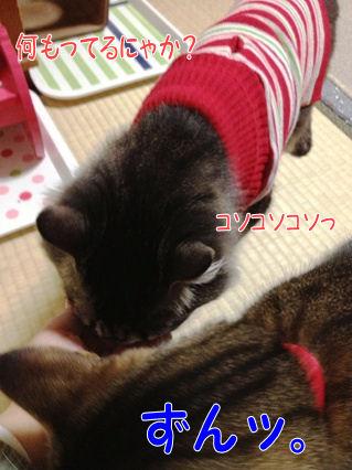 7_20121223000003.jpg