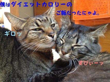8_20121025171621.jpg
