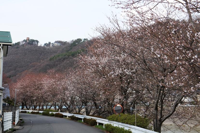 20130406奈良井川2