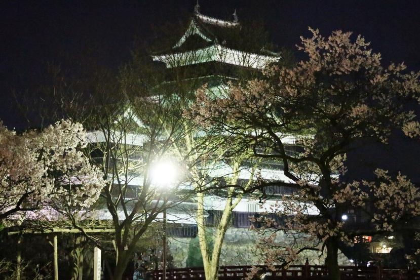 20130407松本城3
