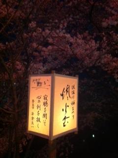 20130331sahogawa3.jpg