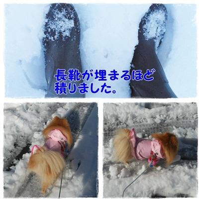 雪さんぽ1