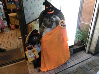 たぬきかぼちゃ