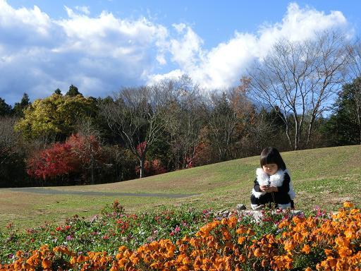 富士山を背景に遊ぶ