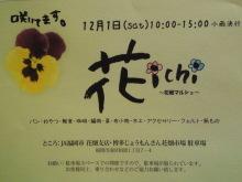 hanaichi.jpg