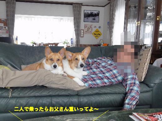 1-1_20130109120230.jpg
