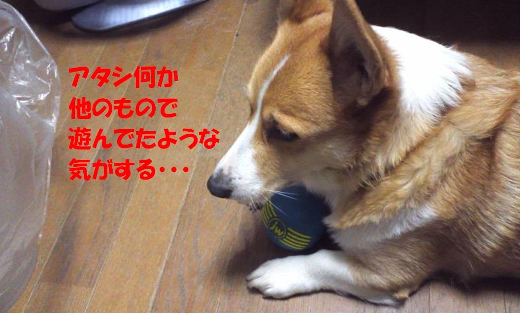 20130118064014f51.jpg