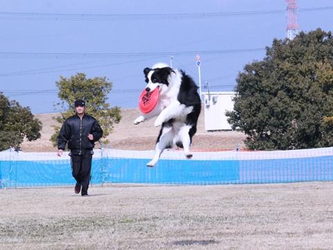 20130119-K9木曽三川カルチャービレッジ 441-004