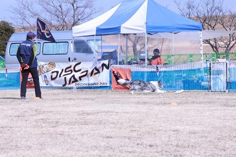 20130119-K9木曽三川カルチャービレッジ 428-002