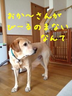 2_20121022145710.jpg