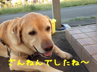 ___20121001141947.jpg