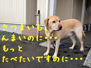 ___20121019110953.jpg