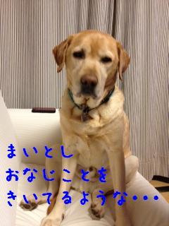 ___20121217141624.jpg