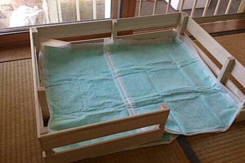 fc2blog_20120626094020d52.jpg