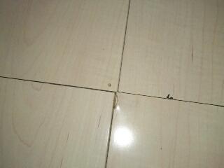 fc2blog_20120719141641bac.jpg