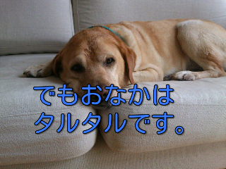 fc2blog_20120824144038a35.png