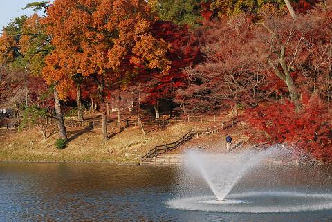 池に噴水が