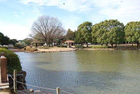 大門公園の池の風景