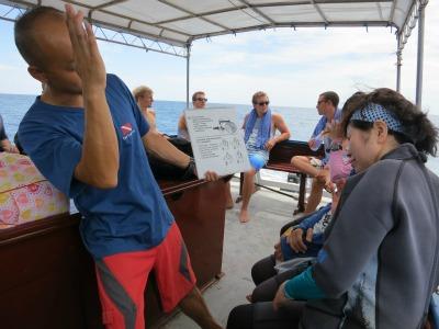 9月1日 体験ダイビング タオ島